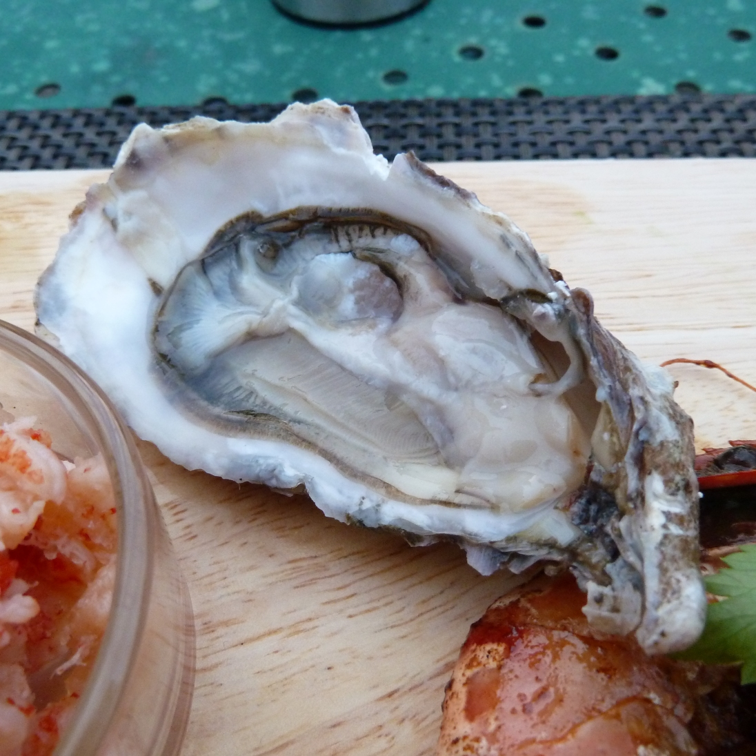 oyster-Whitstable-Kent